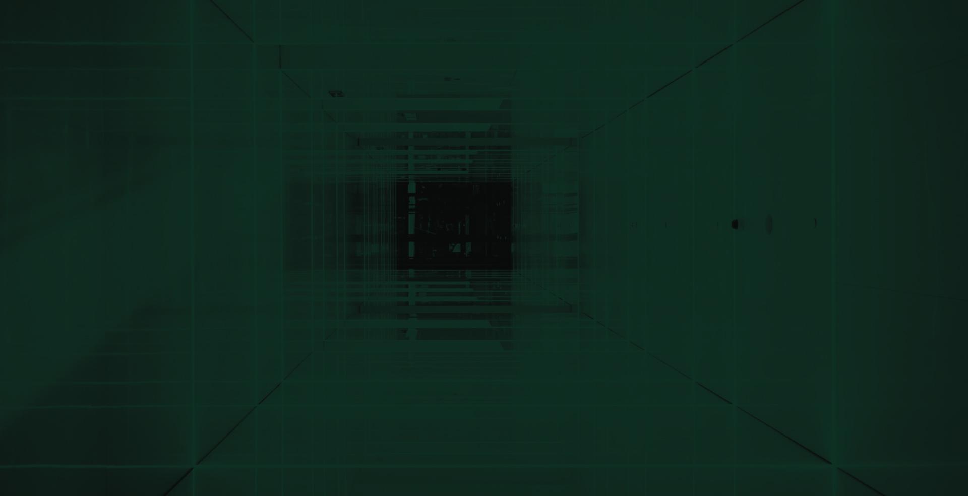 duotone1.jpg